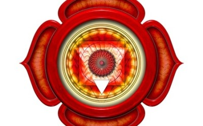 Root Chakra Symptoms of a Blockage