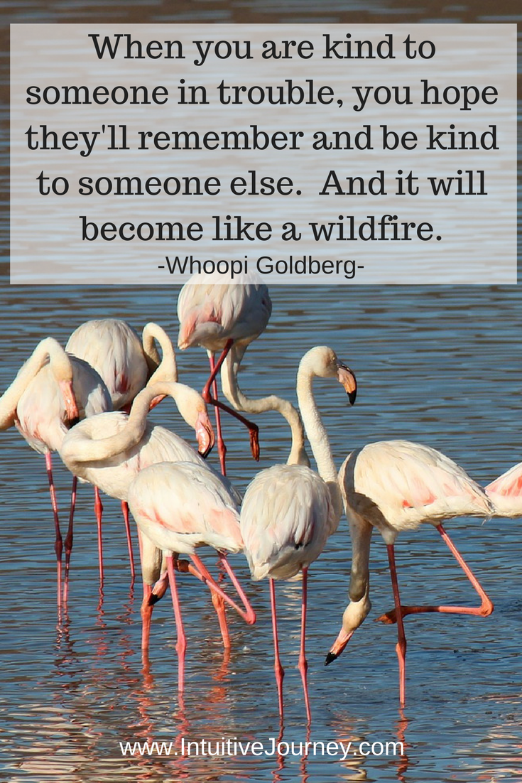 When you are kind to someone in trouble, you hope they'll remember and be kind to someone else. And it will become like a wildfire. ~Whoopi Goldberg
