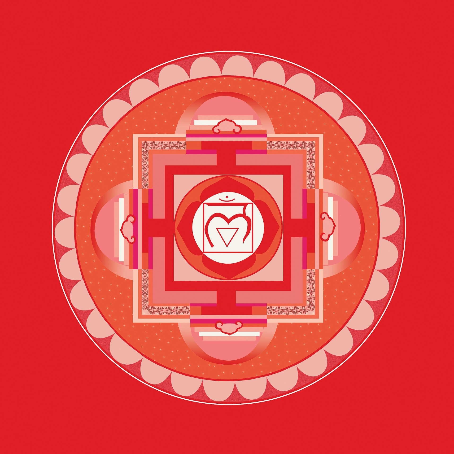 Signs your Root Chakra is Opening | Intuitive Journey