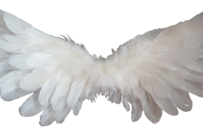 10 Signs from Your Angels