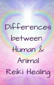 What is the difference between doing human Reiki and animal Reiki?