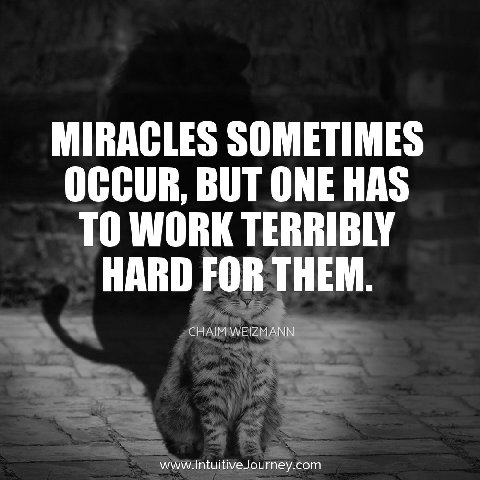 Miracles sometimes occur, but one has to work terribly hard for them.  ~Chaim Weizman