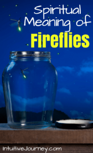 Spiritual Meaning of Fireflies | Intuitive Journey